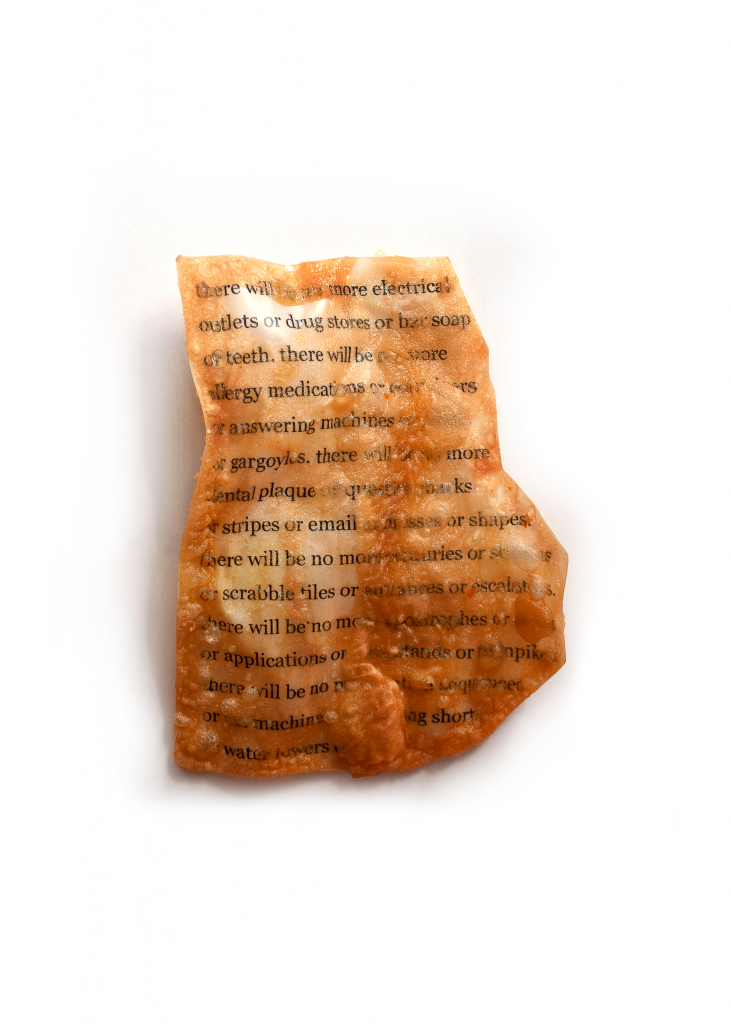 A piece of paper, fried and battered to a crispy golden brown. The legible text reads: there will be no more electrical outlets or drug stores or bar soap or teeth. there will be no more allergy medications or                 or answering machines                or gargoyles. there will       more dental plaque or question marks or stripes or email          or shapes. there will be no more         -ries or            or scrabble tiles or                or escalators. there will be no more apostrophes or     or applications or      -tands or turnpikes. there will be no          or     machine       ng short      water towers